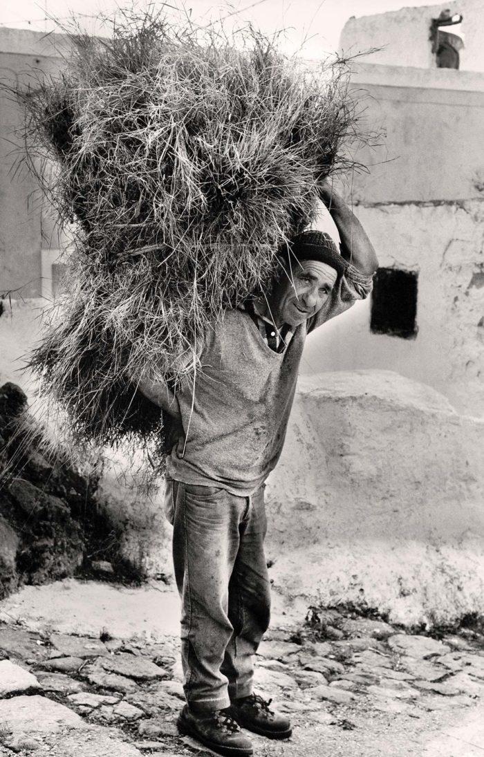 22-minicuccio-di-barbaresco,-contadino,-l'isola